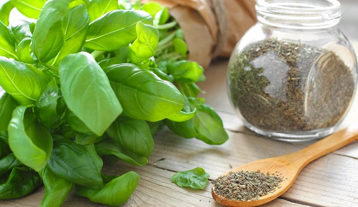 Substitute Dried Basil For Fresh